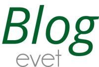 BLOG-EVET